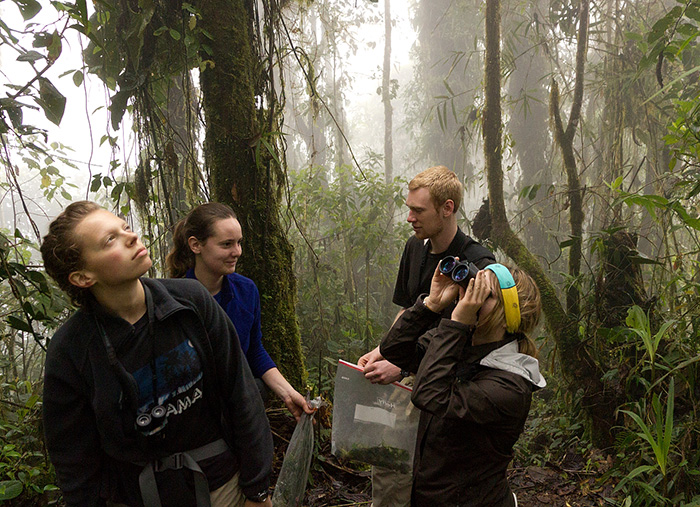 UW students exploring forest in Ecuador